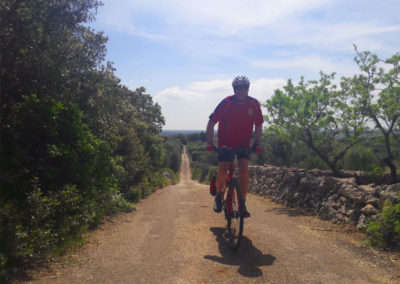 heart-of-puglia-cycling-tour-valle-itria
