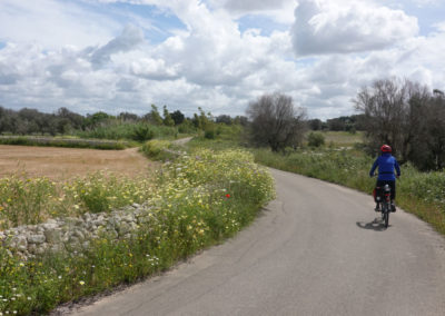 heel-of-the-boot-cycling-tour-near-lecce